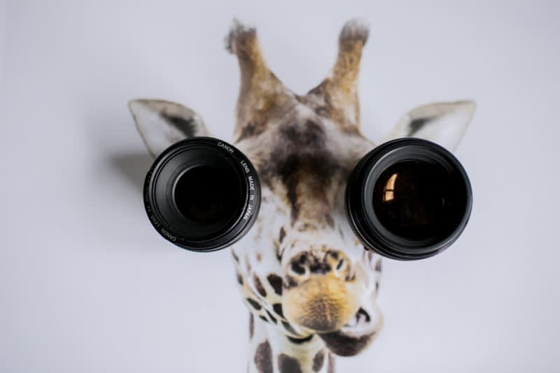 memilih lensa untuk kamera dslr
